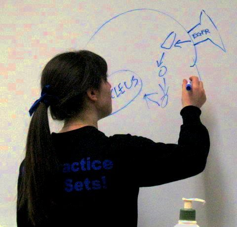 Millburn High School Student Named Semi-Finalist in Siemens Competition in Math, Science and Technology