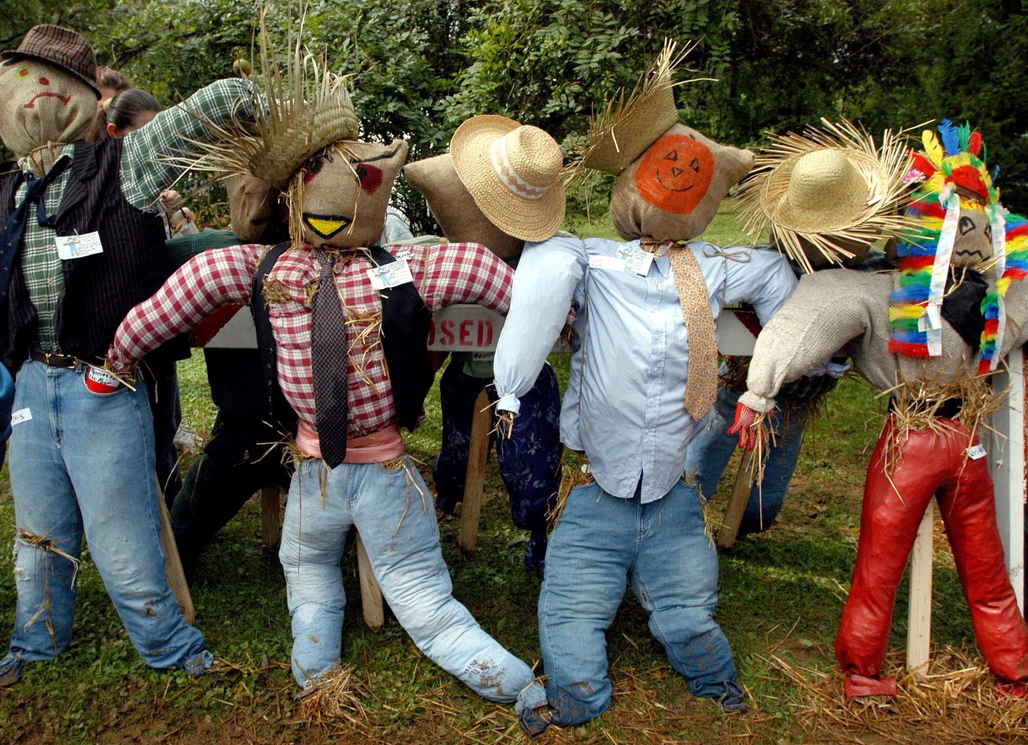 db20316bd64cc24c178a_harvest_festival_scarecrows_092610.jpg