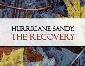e41b18ef77e7858c3686_Hurricane_Sandy_Recovery_graphic.jpg