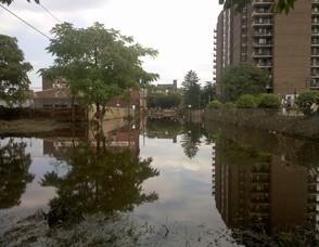 eb98a4242f7620d03cd0_flood.jpg
