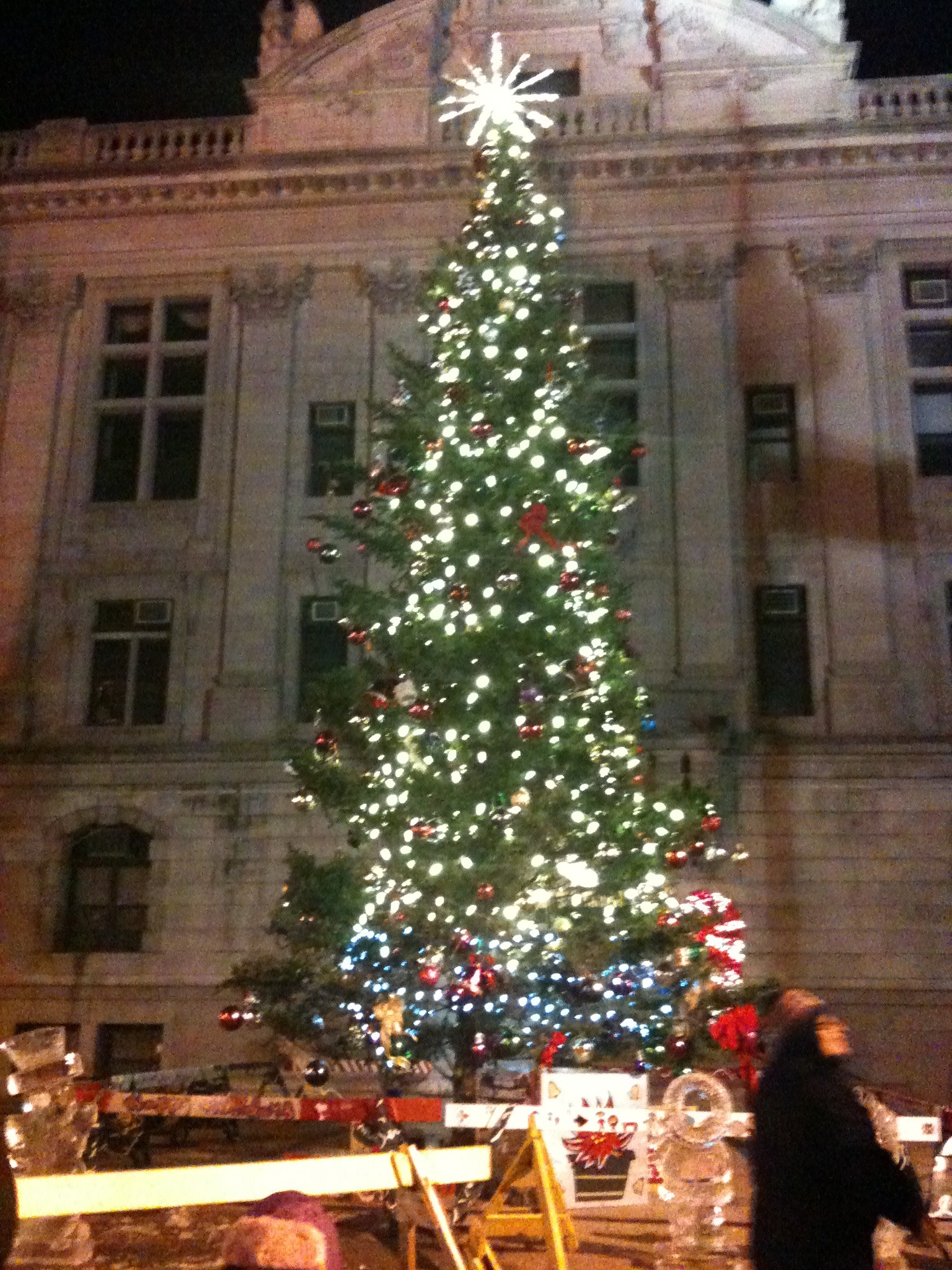 ef11803369357a5640cf_lit_up_christmastree.jpg