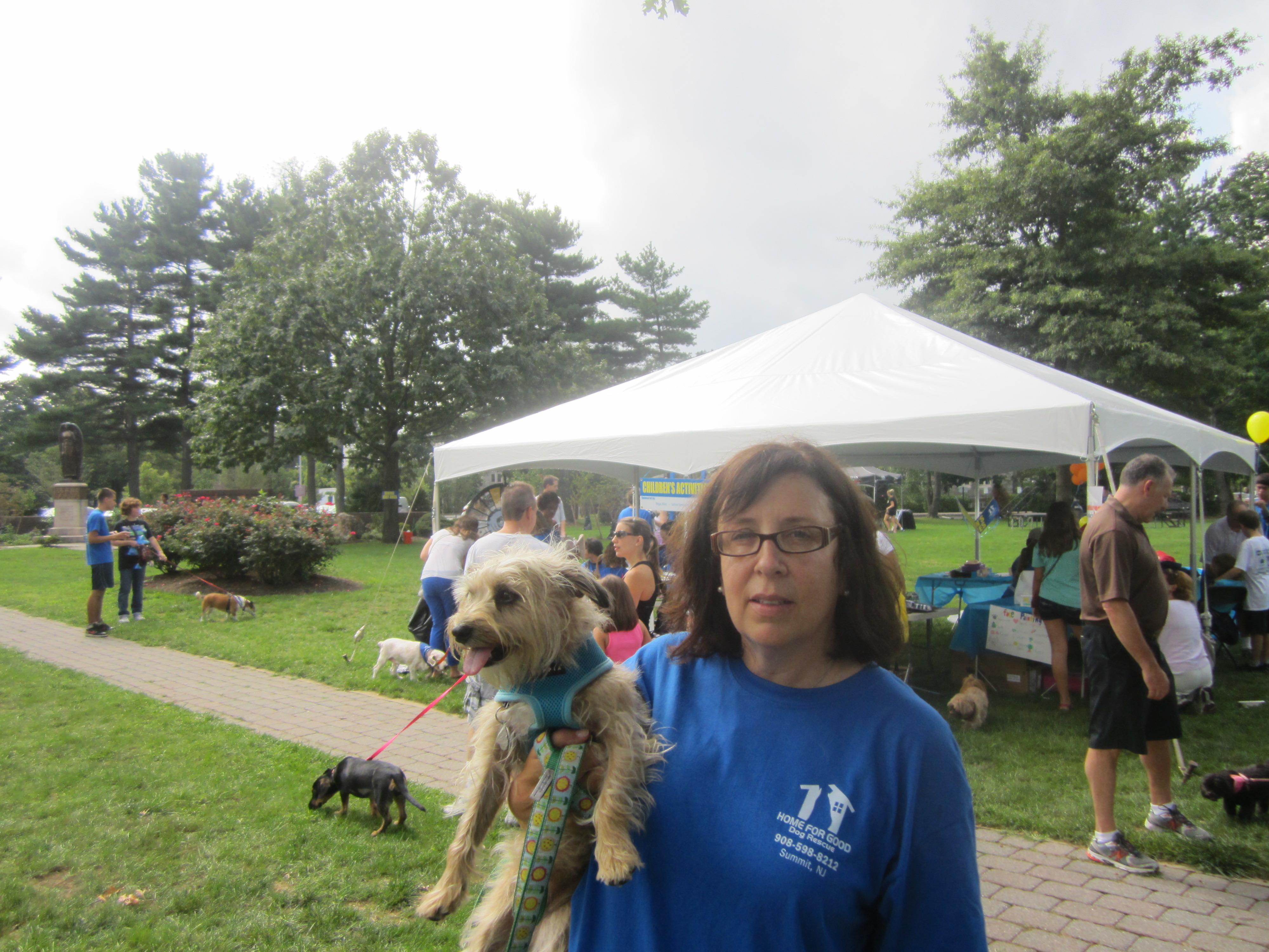 Home For Good Dog Rescue Bark A Que