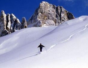 Fresh Trentino Powder