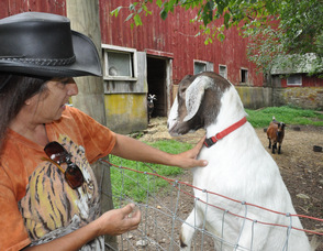 Diane Romano with one of the farm's pet goats.
