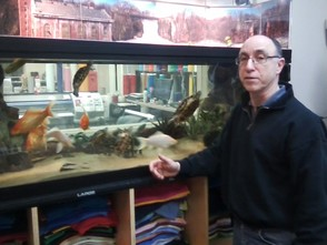 Alfano Island Store's Aquarium Provides a Passaic River Refuge, photo 1