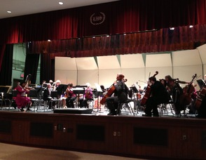 Livingston Symphony Orchestra Presents 'Winter Frolic', photo 1