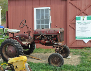 An antique tractor on display at the farm.