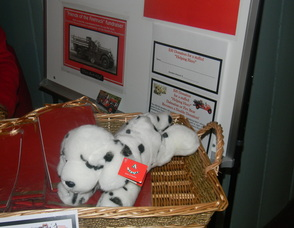 a Dalmatian for the Helping Hero charity