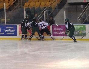 Livingston Hockey