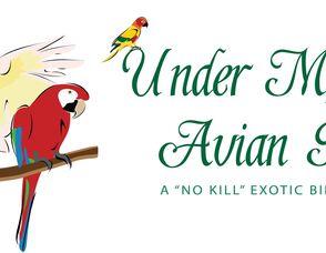 Under My Wing Avian Refuge