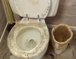 Carousel_image_a61e92a8f28ece902a92_toilet