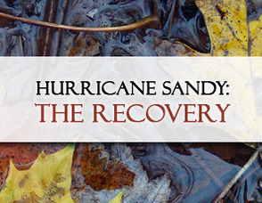 Hurricane Sandy Recovery Update from Chatham Borough Mayor Bruce Harris, photo 1