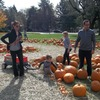 Small_thumb_213392fd14a8cf38bc81_pumpkinpatchpcct2012october14_004