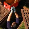 Small_thumb_a5099c045ac462a3ccb9_ducklingintoboxsmaller