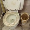 Small_thumb_a61e92a8f28ece902a92_toilet