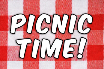 Top_story_24581d6774362a3bb40a_picnic