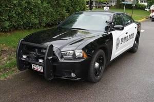 Carousel_image_88588815584692f66f69_1f73dd8ffd3485ff8e68_6f4085d11846efeed267_dc28b45f1337cc4afff6_7e79602244d34e78689e_police_car_dvs1mn