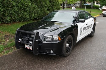Top_story_dc28b45f1337cc4afff6_7e79602244d34e78689e_police_car_dvs1mn