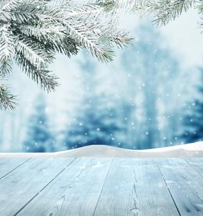 Carousel_image_5b889dac8ad2d5dc7840_snow_3