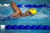 Thumb_10341fb4b8035eb89ab1_swimming_department_of_defense_photo_by_u.s._air_force_tech._sgt._michael_r._holzworth
