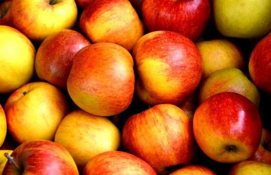 Top_story_1b30fe0c26eac3eab632_apple-fruit-fruits-delicious-162806