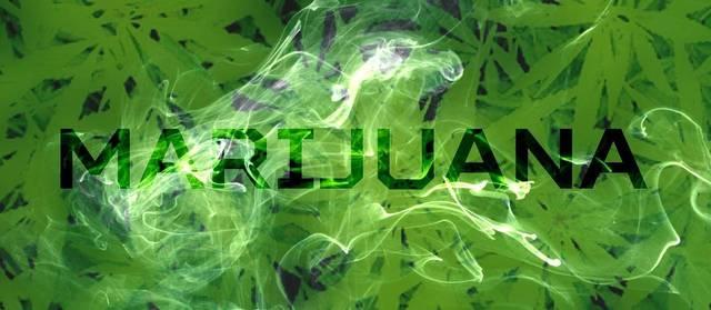 Top_story_23d1e565dc6bfbe5fd1a_marijuana-1915024_1280