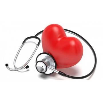 Top_story_25d465b60656ea926d32_hearth-health-600x600