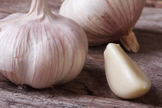 Top_story_35d1f7158347305e32fb_garlic
