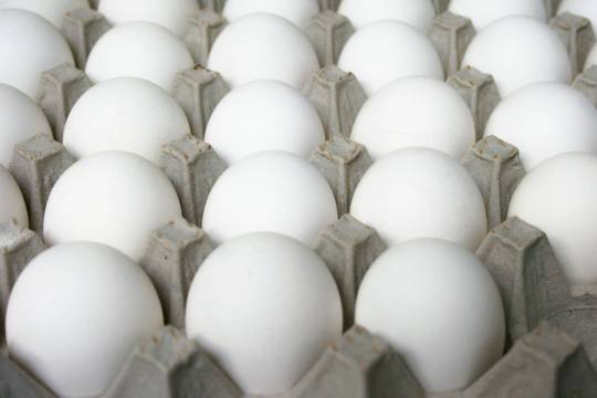 Top_story_42f0be5838203119770c_eggs_017
