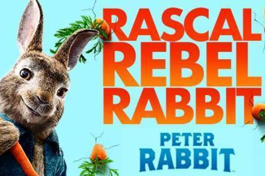 Top_story_44fe3d556ad84f45f28d_e30381dcd6c1c72cfd55_family_flix_peter_rabbit