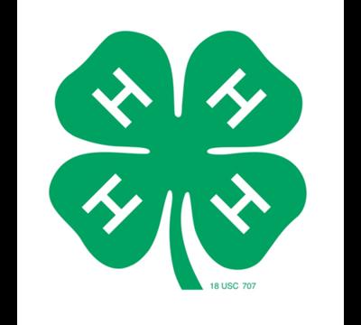 Top_story_4803298301433c77ba35_2014-4-h-logo