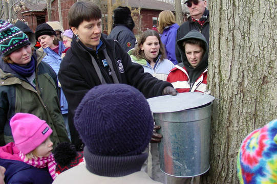 Top_story_4a0a78bed423542b1040_b8625b92758252286f0e_gsoec_maple-sugaring_crowd-looks-on_161209_115553