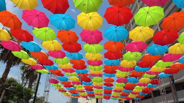 Top story 4c2709b76a7770c0848f umbrella image