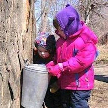Top_story_4e2d8b678e2c91032cb7_c31fab6816fad78640b8_girl_tapping_tree