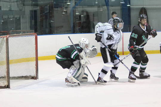 Top_story_511f090e7c930babaa58_ridge_brhs_hockey