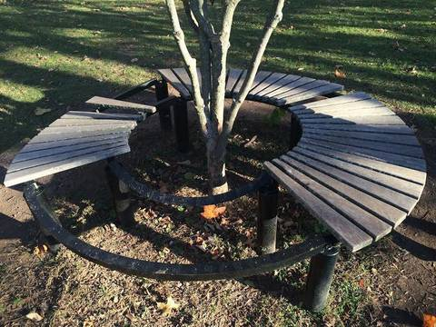 Top story 52cd26ced563c3abe215 meadowland park bench