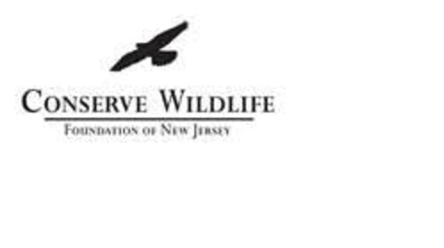 Top_story_64e167d022fed0d25f77_conserve_wildlife