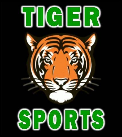 Top_story_68f707e50a3419b4b1be_tiger_sports_logo