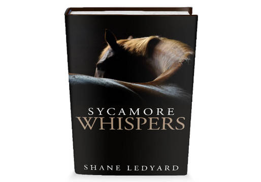 Top_story_69eefce4f0ef6b13fc95_sycamore_whispers_cover