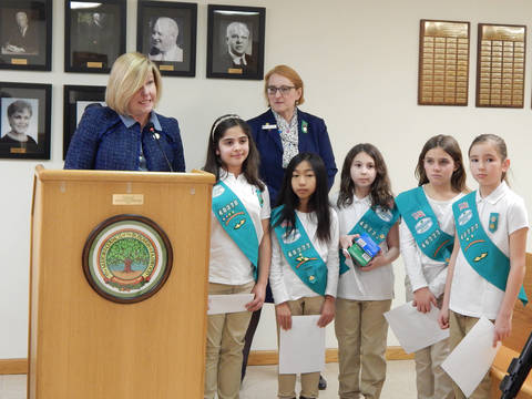 Top_story_6cfbfad02a90234c0e1f_girl_scouts