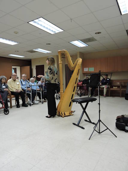 Top_story_75b3e196f14974555eb0_music_for_all_seasons_harpist_diane_michaels_3.15.18_018