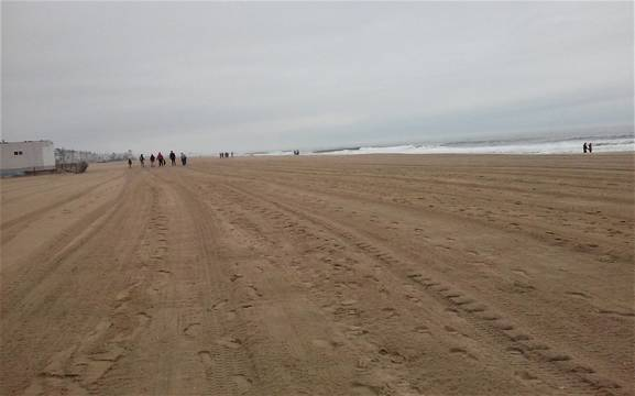 Top_story_7d2bec8dd4a0ab83e595_beachsweep-5__2_