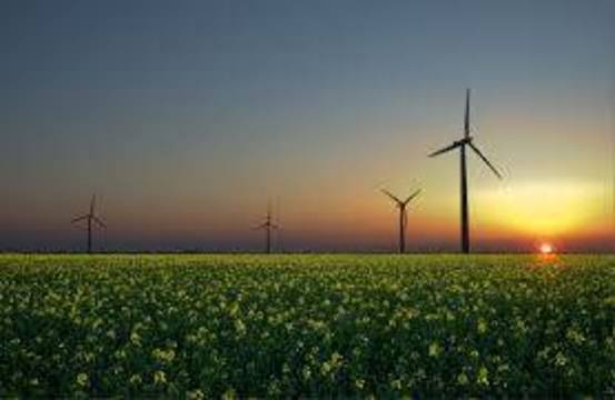 Top_story_7ff44271a400444b1d5c_renewable