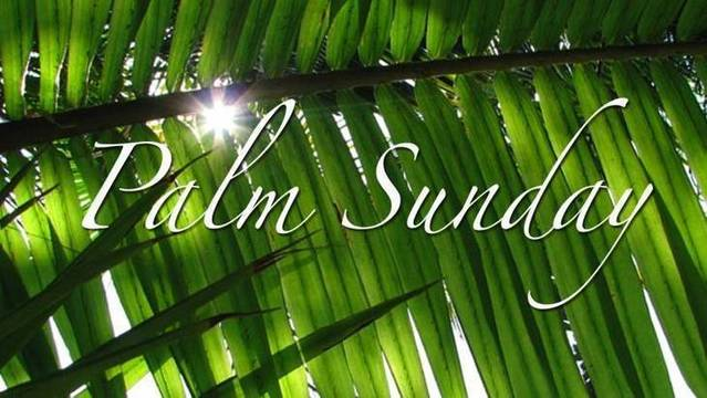 Top_story_81a4dc84ca778e0b6ecc_tapinto_palm_sunday