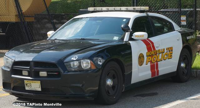 Top_story_8c0607fd049487fc1c4c_a_police_car_watermark