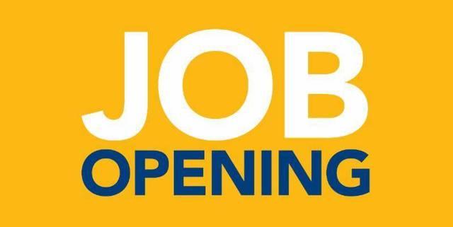 Top story 97c7ff99901522c91cbf job opening