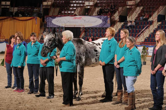 Top_story_a8543b4a09e7985b0674_pnhs_therapeutic_riders213