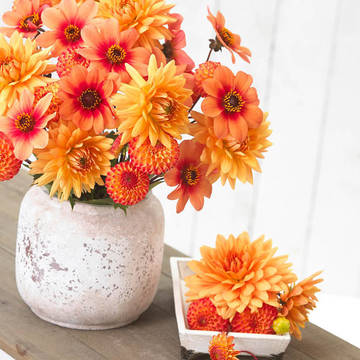 Top_story_b43c4e31e07e3eadecbe_dahlia_soft_orange_mix_b_-_longfield_gardens