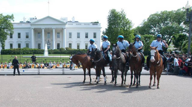 Top_story_b68782eea46fa6c4c814_us_park_police_whitehouse