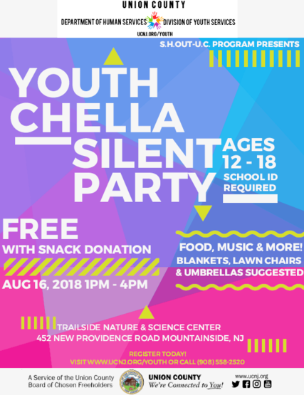 Top_story_bc73323f0c2496b7f038_youth_chella_flyer